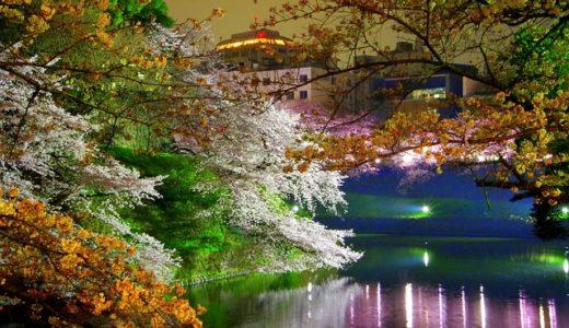 【フリーBGM】ライトアップされていた綺麗な夜桜/盛り上がりのあるとても切ない曲