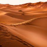 【フリーBGM】広がる砂漠/荒野を走り回るようなフィールド曲