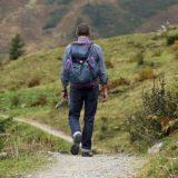 【フリーBGM】景色が綺麗な静かな道を歩く人/優しい雰囲気のある曲