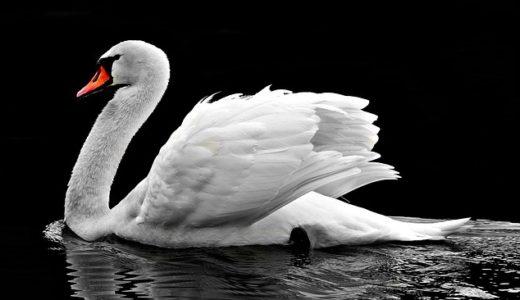 【フリーBGM】白鳥の貴方/暗くワルツなバレエ曲