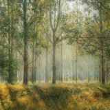 【フリーBGM】草木が生え鳥が鳴く道を歩く僕/自分勝手なピアノ曲