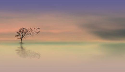 【フリーBGM】動物達が集まる一本木/盛り上がりのあるピアノ五重奏