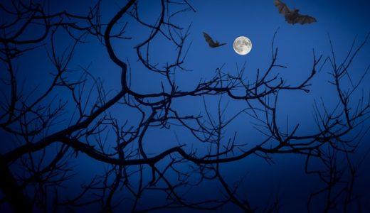 【フリージングル】コウモリが飛び交う洞窟/怪しいピアノジングル