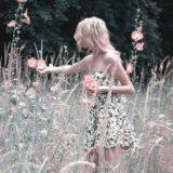 【フリーBGM】道路に咲く花の写真を撮る女性/ちょっとだけ美しいオーケストラ
