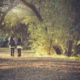 【フリーBGM】日の光が指す道路に落ち葉やカラス達が/ほのぼのとした雰囲気のある