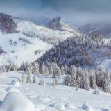 【フリーBGM】雪積もる森林に/透明感のあるピアノ曲